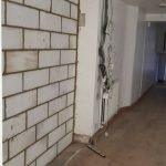 wall damaged from damp